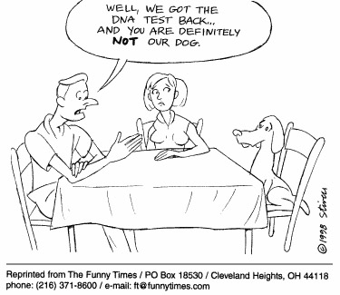 Funny dog stivers dna  cartoon, December 09, 1998