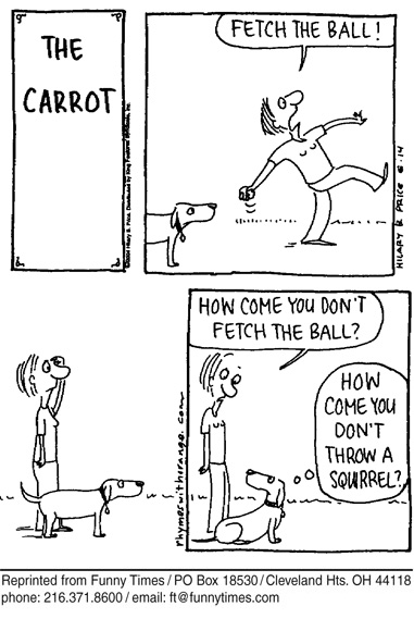 Funny ball dog dogs  cartoon, July 26, 2006