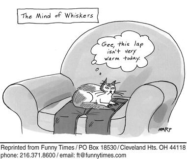 Funny computer cat mind  cartoon, May 30, 2007