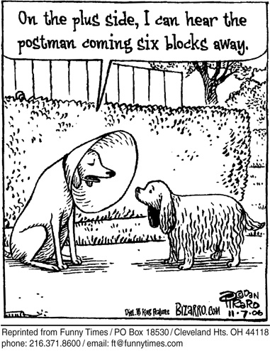 Funny dan piraro dog  cartoon, August 01, 2007