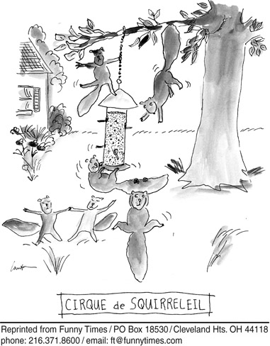 Funny cirque de squirreleil  cartoon, January 16, 2008