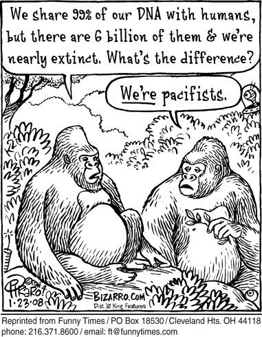 Funny dan piraro man  cartoon, May 28, 2008