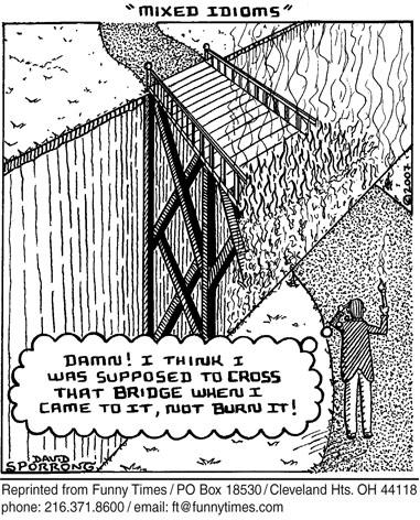 Funny David sporrong idioms  cartoon, July 02, 2008