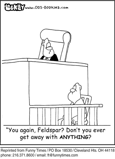 Funny judge lockley court  cartoon, May 26, 2010