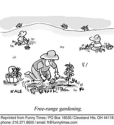 Cartoon Of The Week For August 31 2011 The Funny Times