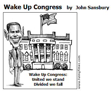 Wake Up Congress by John Sansbury