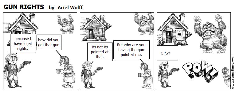GUN RIGHTS by Ariel Wolff