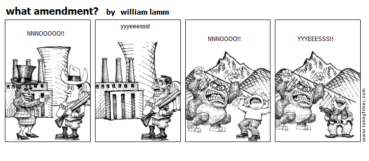 what amendment by william lamm