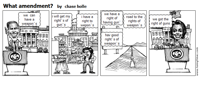 What amendment by chase holle
