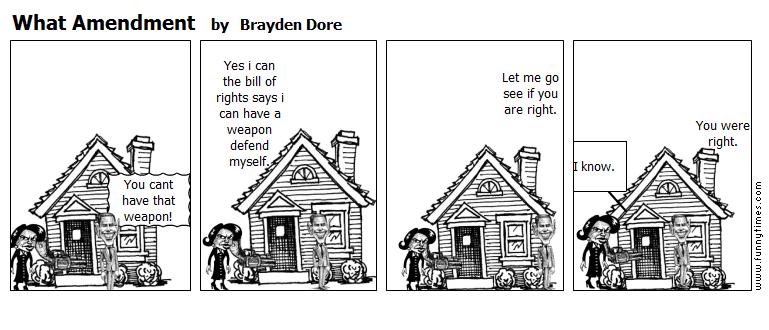 What Amendment by Brayden Dore