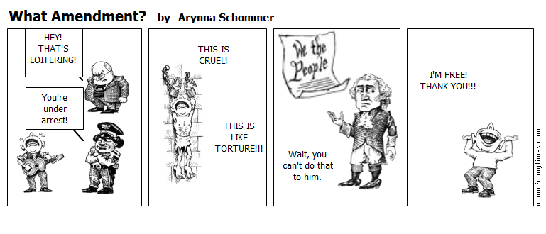 What Amendment by Arynna Schommer