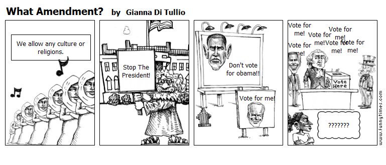 What Amendment by Gianna Di Tullio