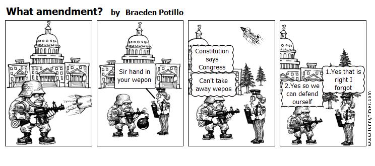 What amendment by Braeden Potillo