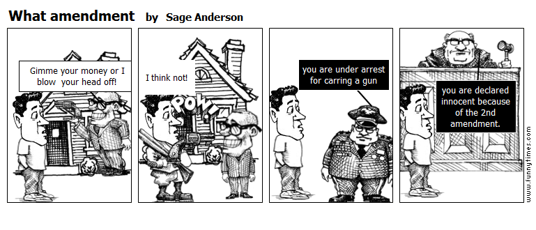 What amendment by Sage Anderson