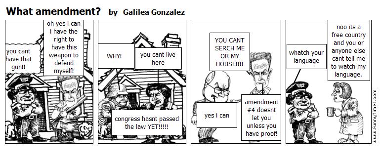 What amendment by Galilea Gonzalez
