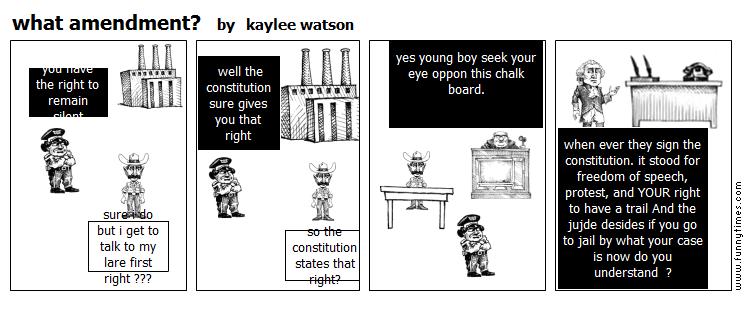 what amendment by kaylee watson