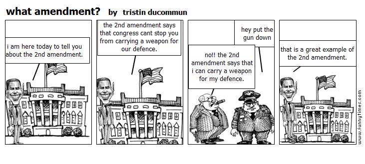 what amendment by tristin ducommun