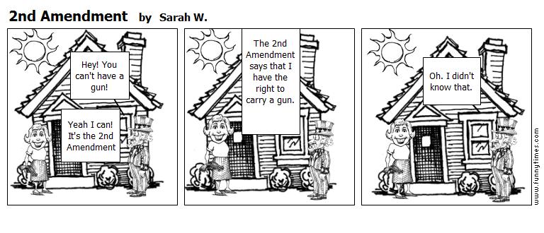 2nd Amendment by Sarah W.