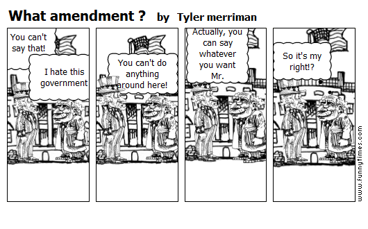 What amendment  by Tyler merriman