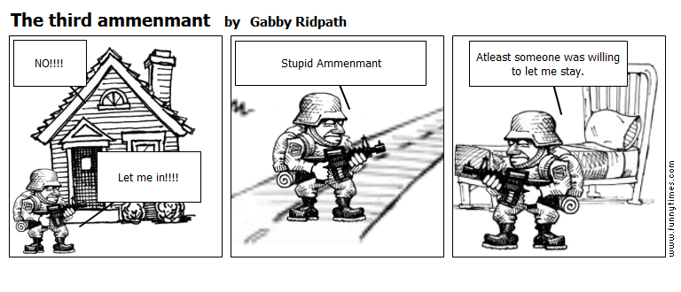 The third ammenmant by Gabby Ridpath