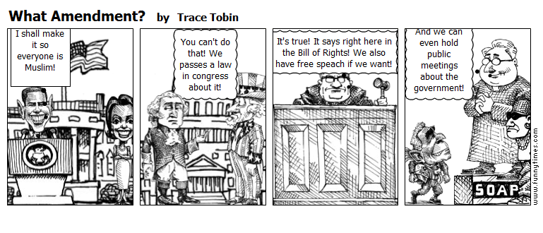What Amendment by Trace Tobin