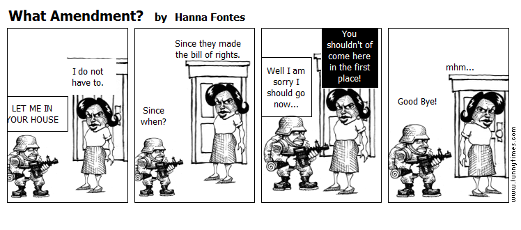 What Amendment by Hanna Fontes