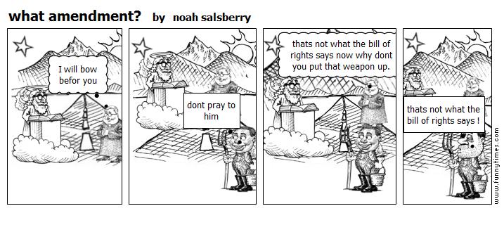 what amendment by noah salsberry