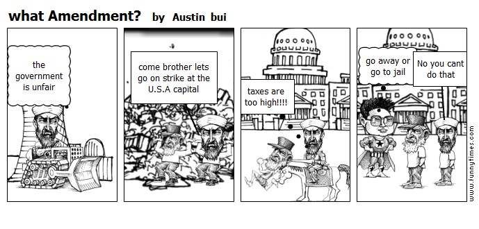 what Amendment by Austin  bui