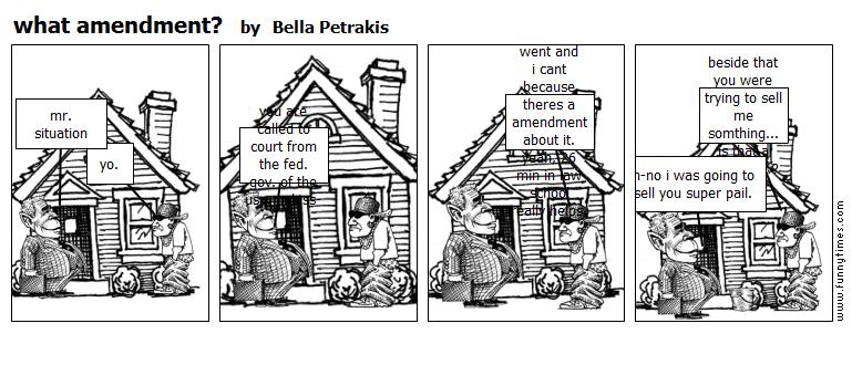 what amendment by Bella Petrakis