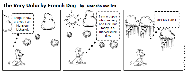 The Very Unlucky French Dog by Natasha ovalles