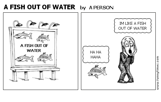 A FISH OUT OF WATER by A PERSON