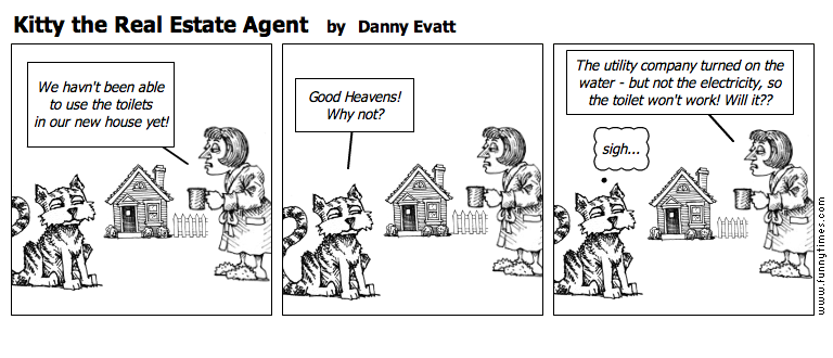 Kitty the Real Estate Agent by Danny Evatt