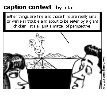 caption contest by cta
