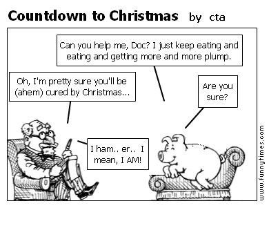 Countdown to Christmas by cta