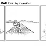 The 'Not so' Battle of Bull Run