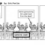 Supreme Partisanship