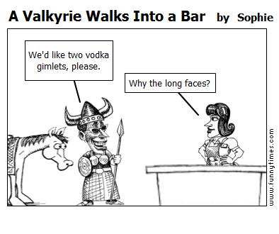 A Valkyrie Walks Into a Bar by Sophie