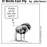 If Birds Can Fly