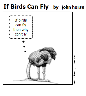 If Birds Can Fly by john horse