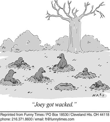 Funny death warp animals  cartoon, August 22, 2012