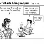 a full-ish bilingual pun