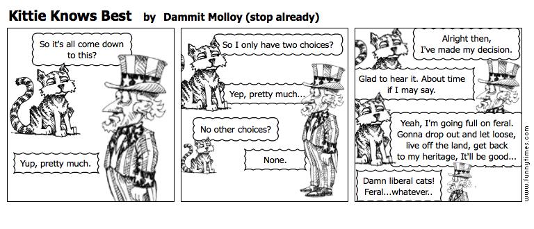 Kittie Knows Best by Dammit Molloy stop already
