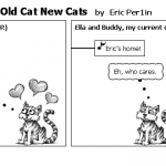 One Cat Two Cats Old Cat New Cats