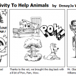 Vets and Their Creativity To Help Animal