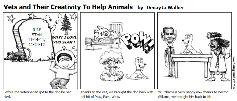 Vets and Their Creativity To Help Animal by DenayJa Walker