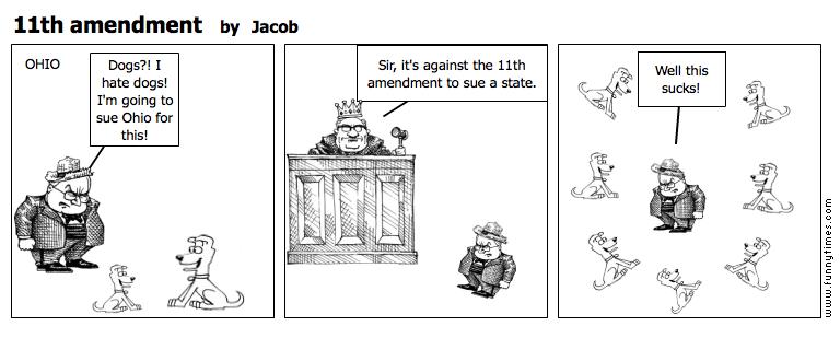 11th amendment by Jacob