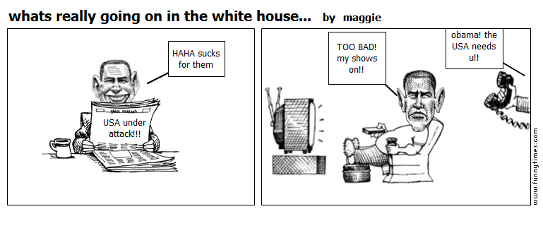 whats really going on in the white house by maggie