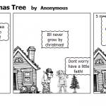Home Grown Christmas Tree