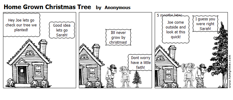 Home Grown Christmas Tree by Anonymous