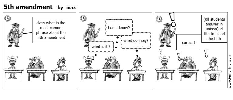 5th amendment by max